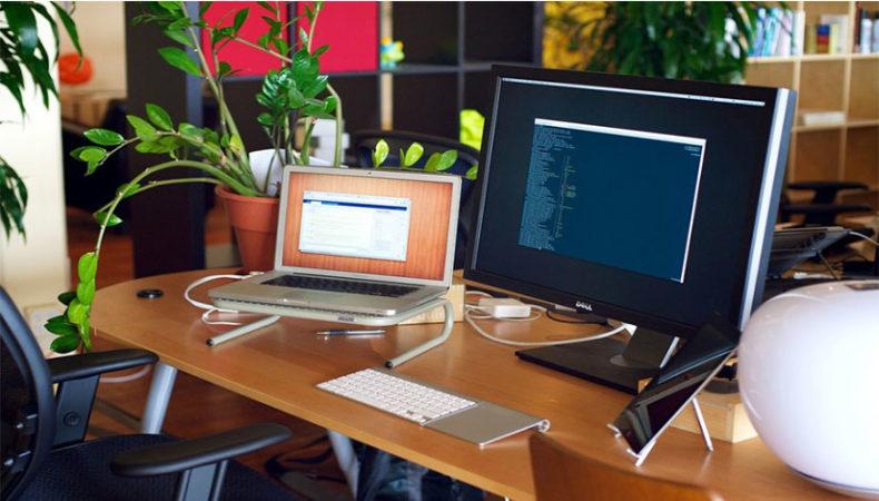 Çalışma masanızda bitki yetiştirin.