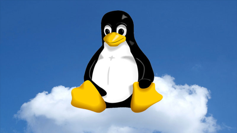 Linux'da Dosya Sahipliği Görme ve Değiştirme İçinChown Komutu Kullanımı