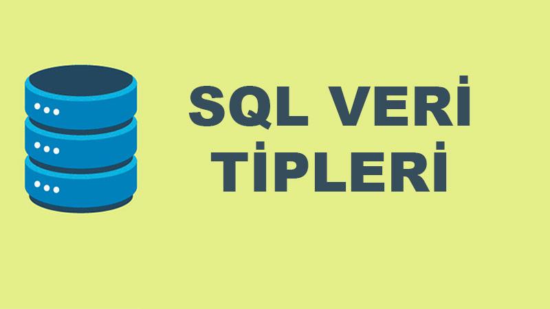 Microsoft SQL Veri Tipleri ve Özellikleri Nelerdir?